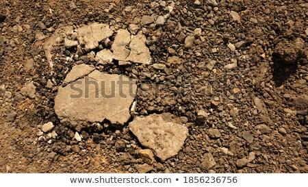 fresh brickwork make wall Stock photo © romvo