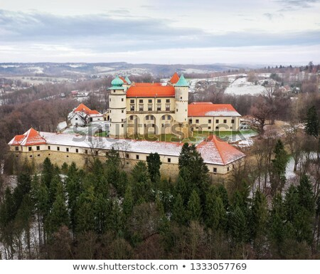 View from the height of the castle in Nowy Wisnicz in winter, Po Stock photo © vlad_star