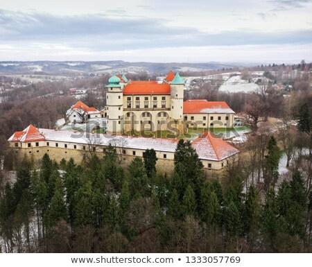 Vista altura castillo invierno Polonia Foto stock © vlad_star