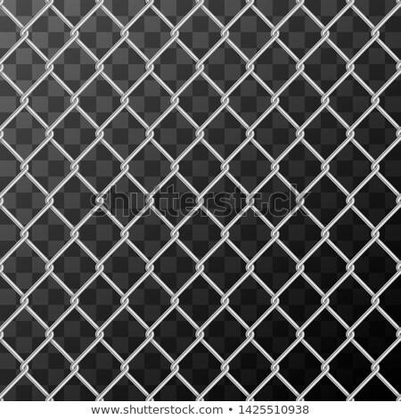 Realistisch glanzend metaal keten link hek Stockfoto © evgeny89