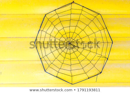 metal spider and spiderweb stock photo © prill