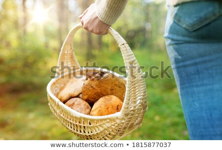 young woman back from woods with mushrooms stock photo © photography33
