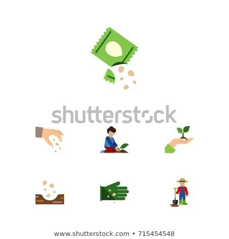 Emberi kezek magok étel kéz természet Stock fotó © kawing921