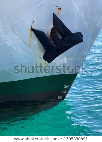 Cruise has been anchored Stock photo © zzve