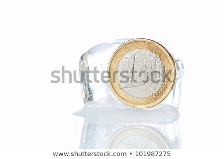 Foto stock: Brilhante · euro · moedas · congelada · gelo · financeiro