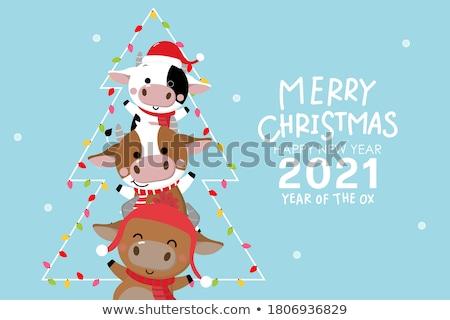 pupazzo · di · neve · indossare · sciarpa · illustrazione · cap · Natale - foto d'archivio © vectomart