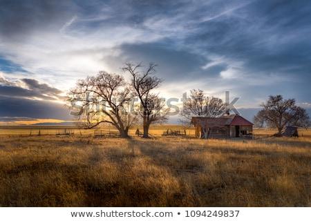Colorado farm préri tájkép keleti ház Stock fotó © PixelsAway