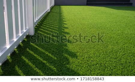 White line painted on artificial turf Stock photo © Mps197