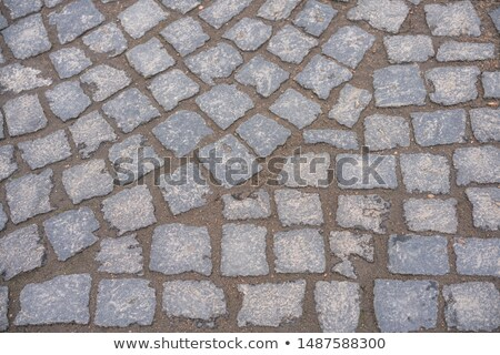 gray granular pavement slabs in rounded shape stock photo © tashatuvango