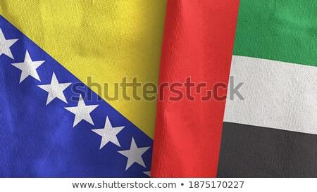 Foto stock: Emiratos · Árabes · Unidos · Bosnia · Herzegovina · banderas · rompecabezas · aislado · blanco