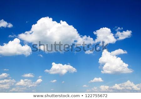 Fehér felhők közelkép kék ég textúra tájkép Stock fotó © stoonn