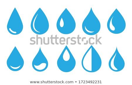 blue logo drop of water icon Stock photo © blaskorizov