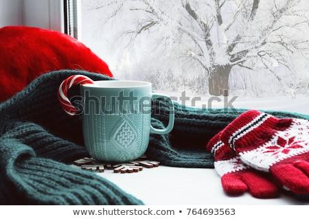 Stock fotó: Tél · tájkép · piros · zöld · zuhan · hó