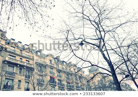 Antique City Building In Paris ストックフォト © ilolab
