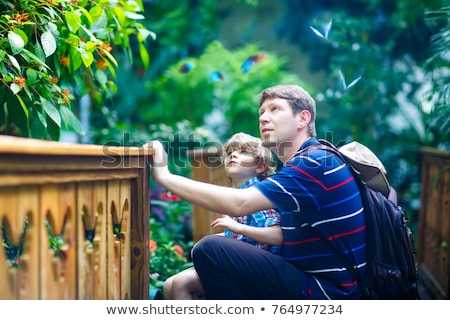 young boy with dad looking a butterfly stock photo © is2
