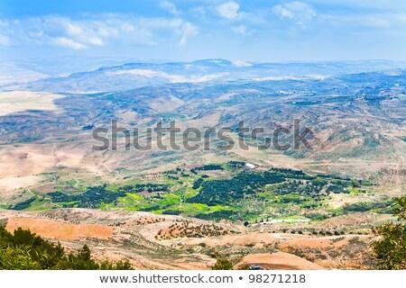 Kilátás hegy föld égbolt fa természet Stock fotó © FreeProd
