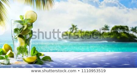 Verano tropicales cóctel beber disfrutar mojito Foto stock © Konstanttin