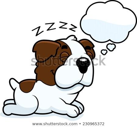 desenho · animado · cão · balão · de · pensamento · mão · projeto · arte - foto stock © cthoman