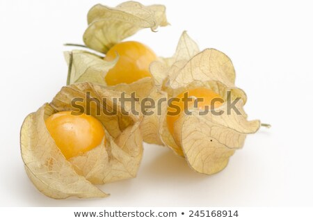 Tomatillo husk tomato, physalis Stock photo © maxsol7