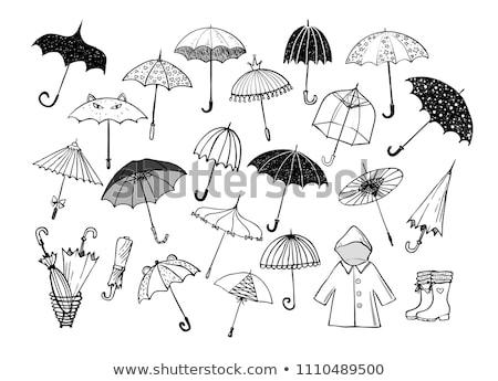 esernyők · illusztráció · terv · háttér · eső · vektor - stock fotó © netkov1