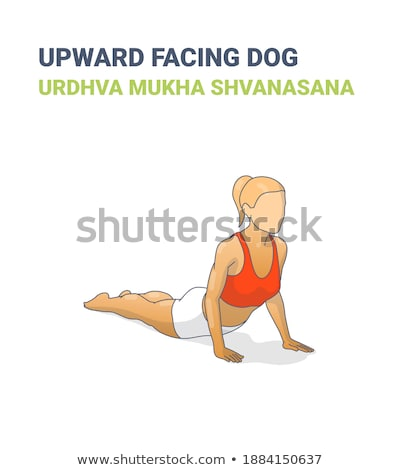 cane · yoga · tappeto · isolato · bianco · ritratto - foto d'archivio © dolgachov