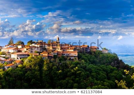 Vista Georgia ciudad centro ciudad paisaje Foto stock © borisb17