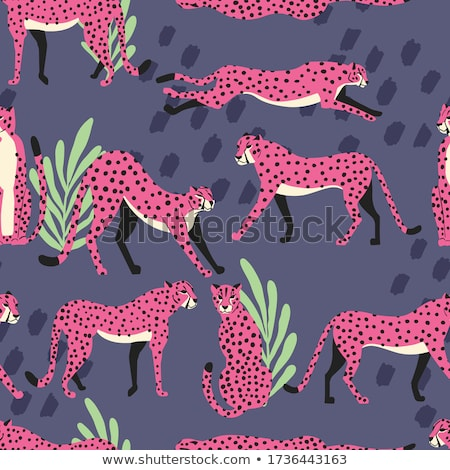 Seamless pattern with hand drawn exotic big cat pink cheetahs, with tropical plants and abstract ele Stock photo © BlueLela