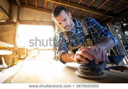 Kézműves dolgozik víz ház építkezés biztonság Stock fotó © photography33