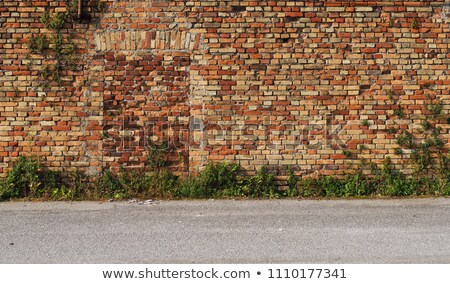 bricked up door Stock photo © sirylok