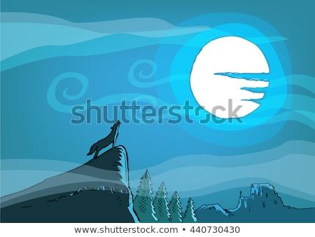 halloween night on grand canyon stock photo © paha_l