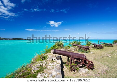 Row of cannons Stock photo © sumners