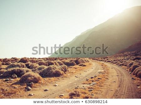 Utwór kraju drogowego przygoda gospodarstwa Zdjęcia stock © Witthaya