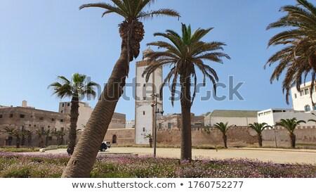Marokkó város keret fal Afrika építészet Stock fotó © ajlber