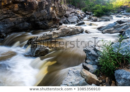Rocky Mountains Stream Stock photo © brm1949
