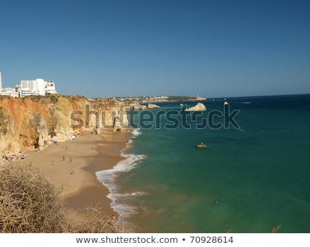 részleg · idilli · tengerpart · régió · víz · természet - stock fotó © wjarek