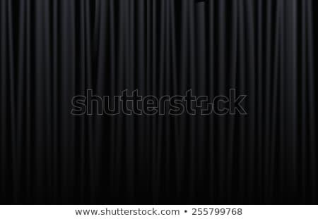 Gordijn zwarte hoog kwaliteit 3d render Rood Stockfoto © ixstudio