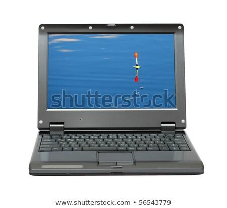 klein · laptop · vissen · water - stockfoto © Mikko