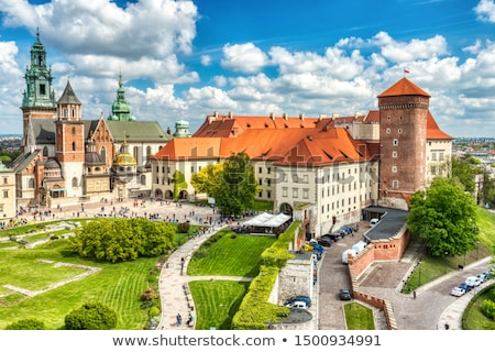 Wawel hill with castle in Krakow stock photo © pab_map