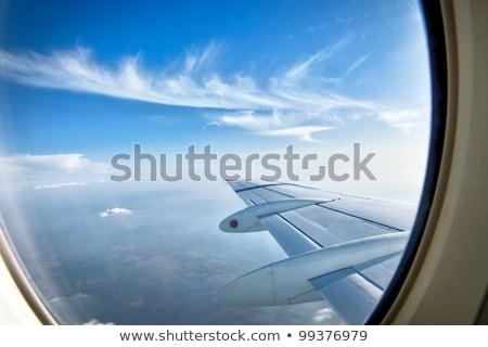 szürke · kócsag · repülés · szürke · Duna · delta - stock fotó © zhukow