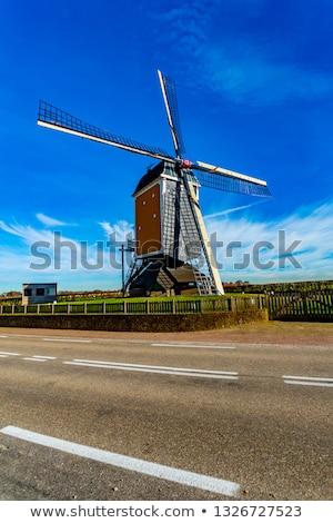 dutch mill in heel limburg Stock photo © compuinfoto