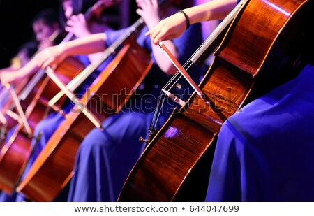 Young Woman Playing Violoncello Stock photo © courtyardpix