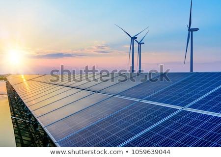 Sostenibile energia illustrazione erba sole natura Foto d'archivio © adrenalina