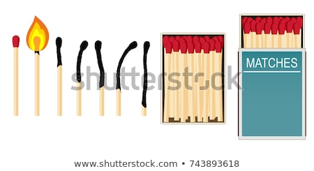 colorful flame with wooden matchstick, Stock photo © fanfo
