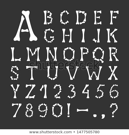 Branco Ossos Fonte Completo Alfabeto Preto Ilustração De