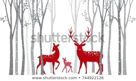 christmas deers in birch tree forest vector stock photo © beaubelle