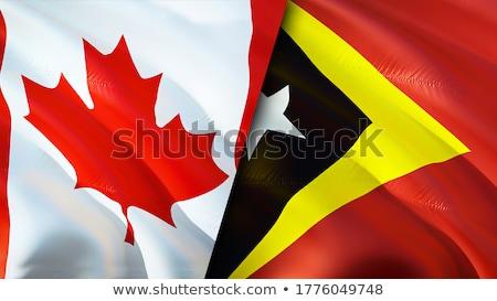 Canada drapeaux puzzle isolé blanche affaires Photo stock © Istanbul2009