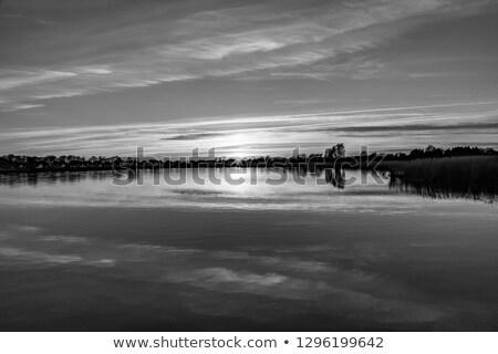 alberi · tramonto · Germania · cielo · natura · campo - foto d'archivio © meinzahn