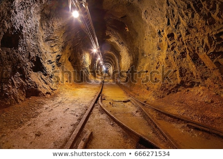 Background of entrance to the mining tunnel. Stock photo © RAStudio