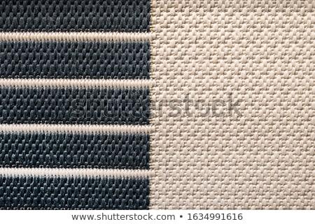 texture of coarse rope Stock photo © pashabo