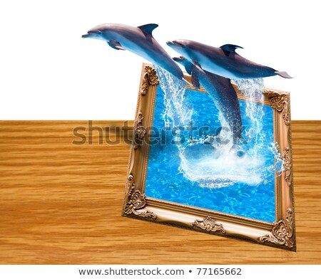 Magic Photo Frame With Three Dolphins Jump Stok fotoğraf © SuriyaPhoto